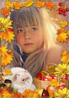 Gato en el otoño