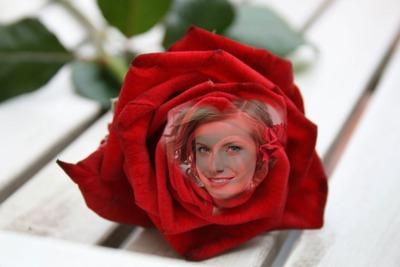 ♥ hjerte i en rød rose