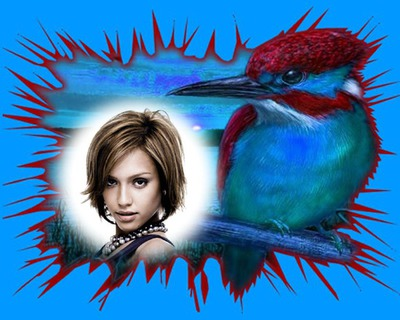 Rysunek kolibra