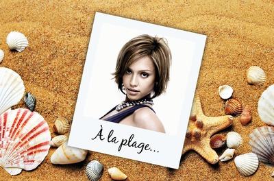 Polaroid in vacanza Shell Beach in estate