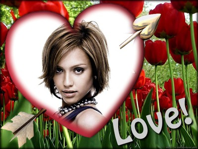 Heart ♥ Love