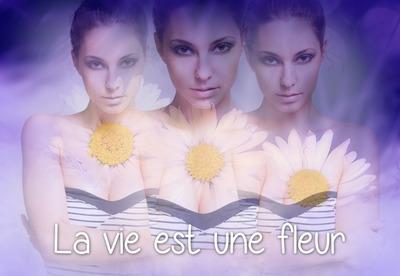 3 kwiaty