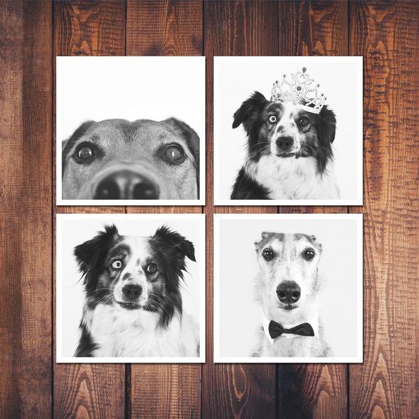 montaje fotografico fotomontaje collage 4 fotos fondo de madera