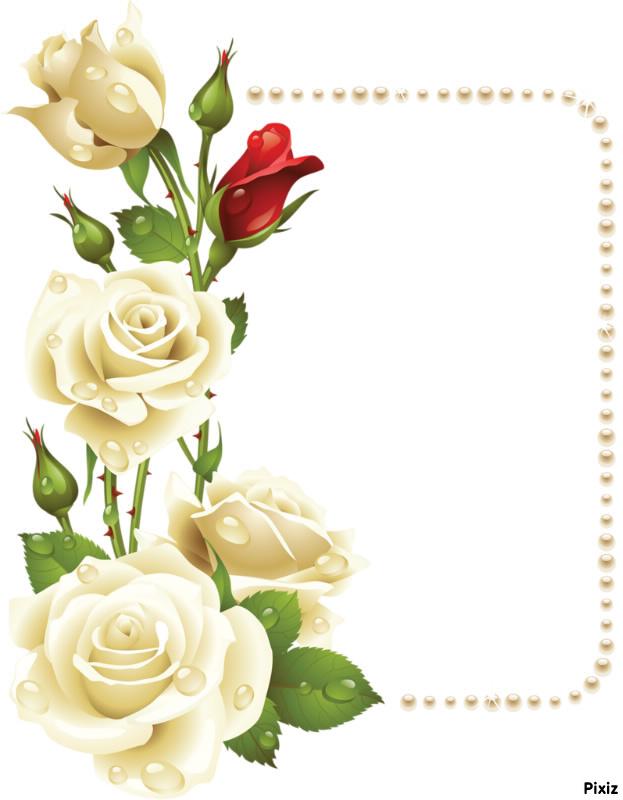 Fotomontage cadre fleur rose - Pixiz