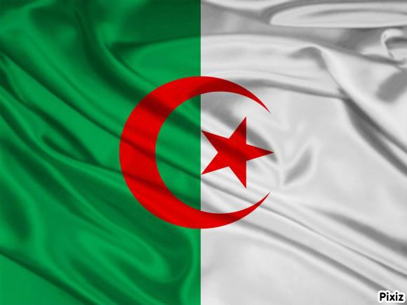 photo-drapeau-algerien