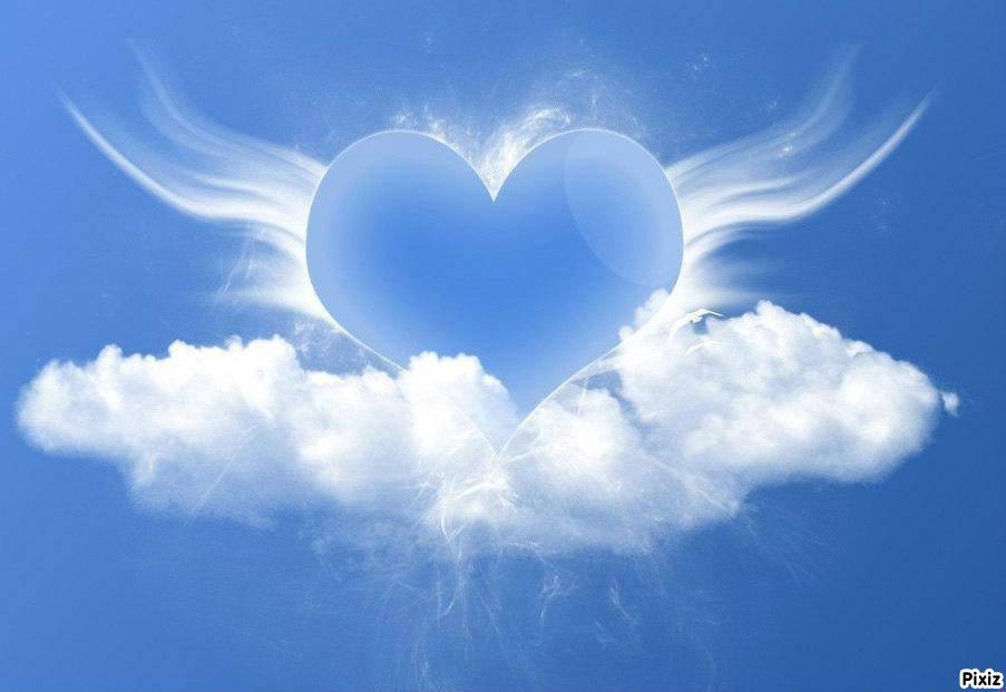 Fotomontage un ange parti au ciel 1 photo - Pixiz