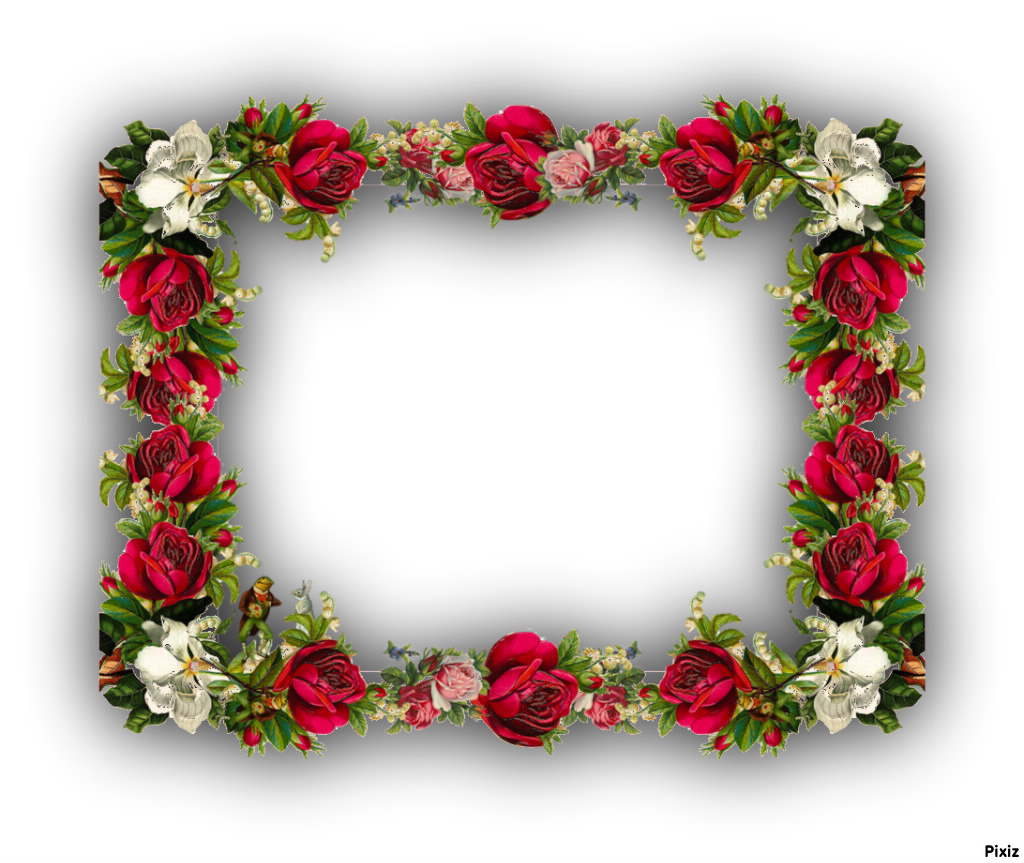 Fotomontage rose frame - Pixiz