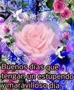 renewilly b dias rosa y corazon