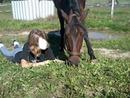 Mon cheval et moi dans l'herbe