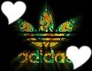 Adidas avec 2 Coeur