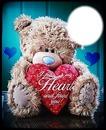 i followed my heart