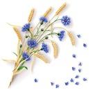 Beautiful flowers like you #8