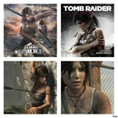 page fans de tom raider 2013 sur facebook