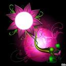 fleurs papillon
