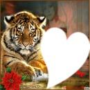 tigre a la fleur