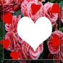 cadre de rose avec coeur