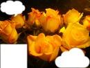 cadre des fleurs
