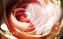 rose de coeur