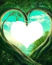 NATUREZA - O Coração de Deus