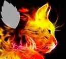 Kitten In Flames