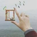 cadre en mer