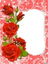 Rose rouge 4