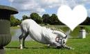 caballo corazon
