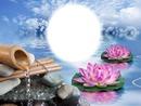 Zen-eau-nuages-bambou-lotus