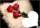 Trois Roses Rouge sur L'oreillé