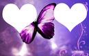 papillon et 2 coeur