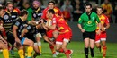 Rugby usap