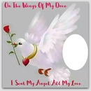 ON THE WINGS OF MY DOVE