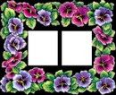 cadre fleurs 2 photos