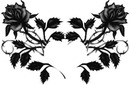rose noire 1