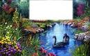 paisagem / paysage / paesaggio