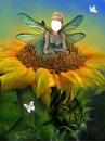 fée sur fleur