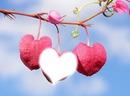 love n°5