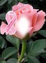 Cc previnir es curar Lazo rosa