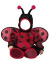 baby coccinelle