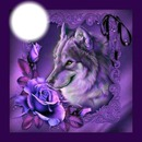 WOLF & ROSES