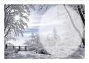 joli paysage d hiver