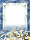 Cadre bleu-marguerites
