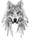 lobo estelar