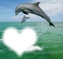 la pureter de l amour et de l ocean
