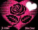 Rose dans un coeur <3