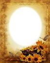 Cadre-nature-tournesol-papillon