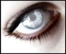 olho / ojo / eye / oeil
