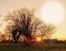 Coucher du soleil à la campagne
