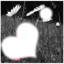 coeur dans les fleurs