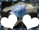 2coeurs rose bleue laly
